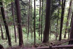 Neureuth, Bavière, Allemagne : Fati's blog