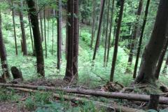 Neureuth, Baviere, Allemagne : Fati's blog